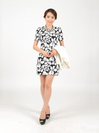 BBS e-commerce sy jung dress